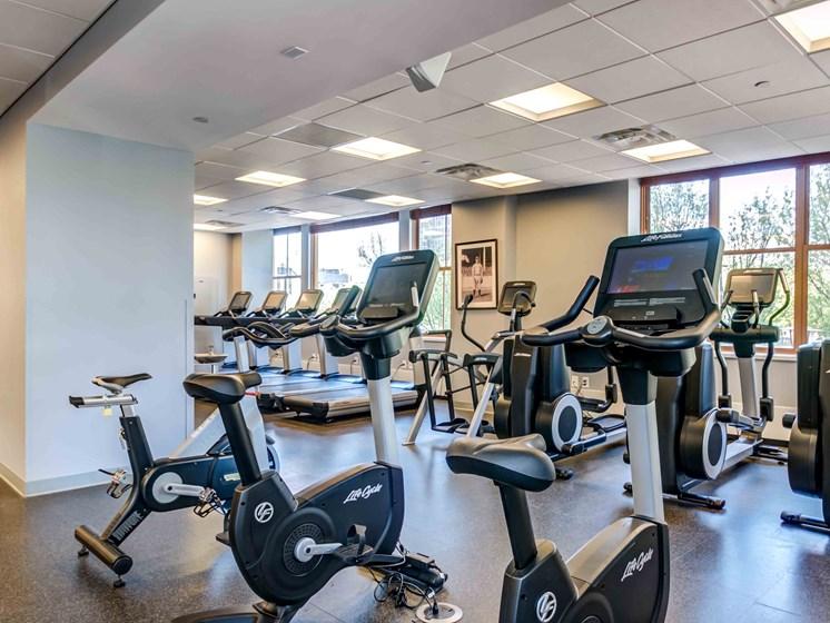 Cardio equipment inside fitness center including recumbent bikes and treadmills