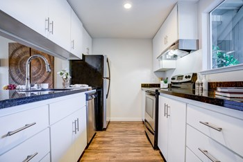 486 Morello Ave 1 Bed Apartment for Rent Photo Gallery 1