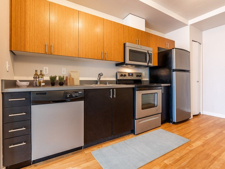 kitchens come fully equipped with stainless steel appliances