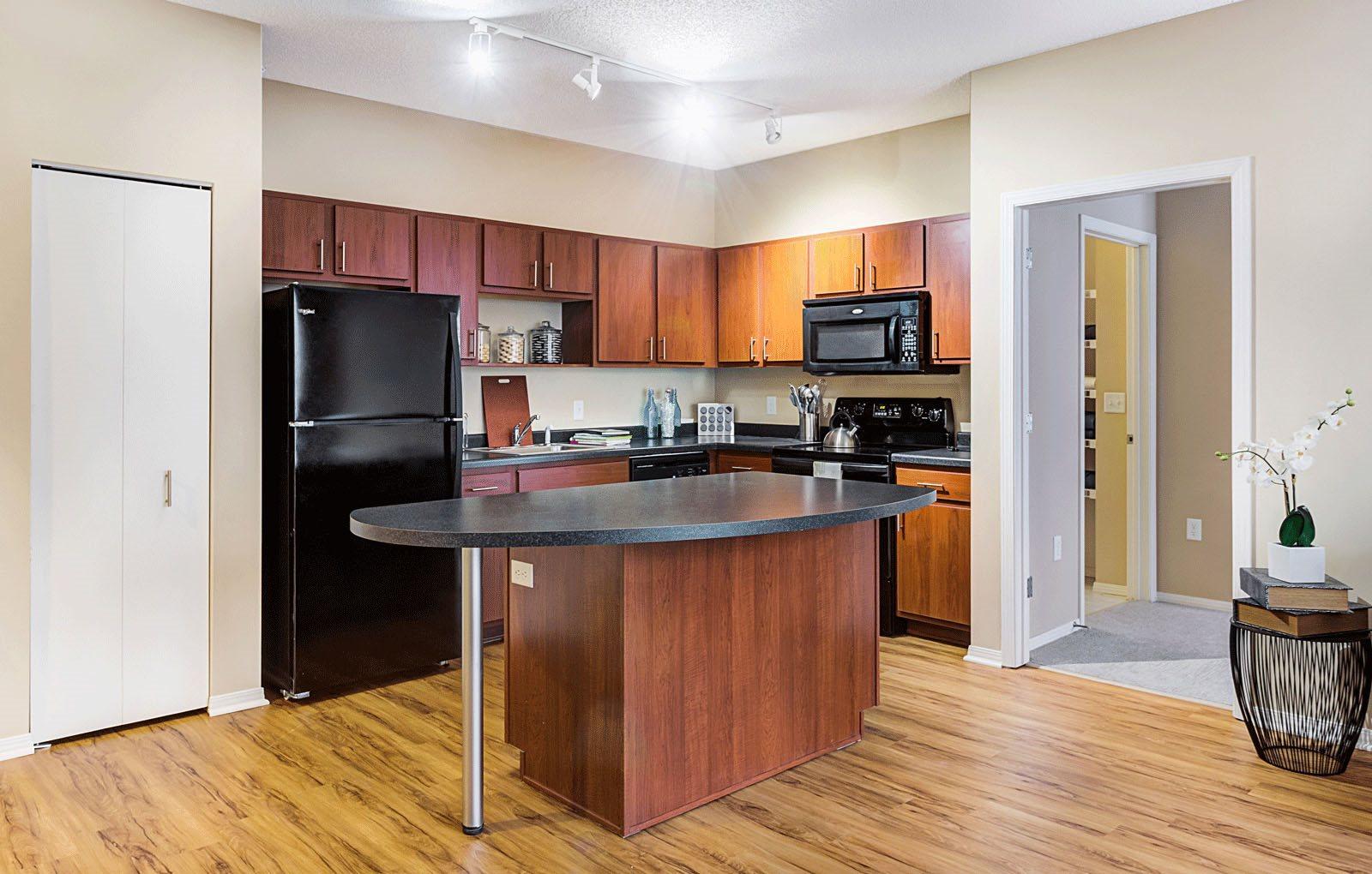 Kitchen Unit at Uptown Lake Apartments, Minneapolis, Minnesota
