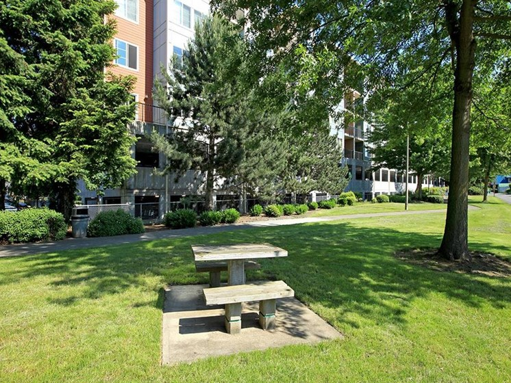 picnic tables, plenty of green spaces