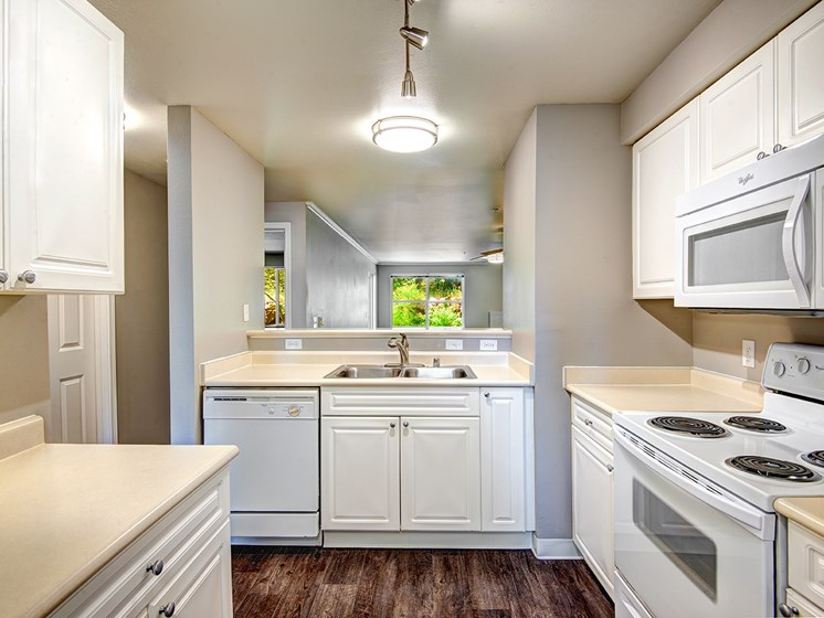 kitchen with wood-style flooring