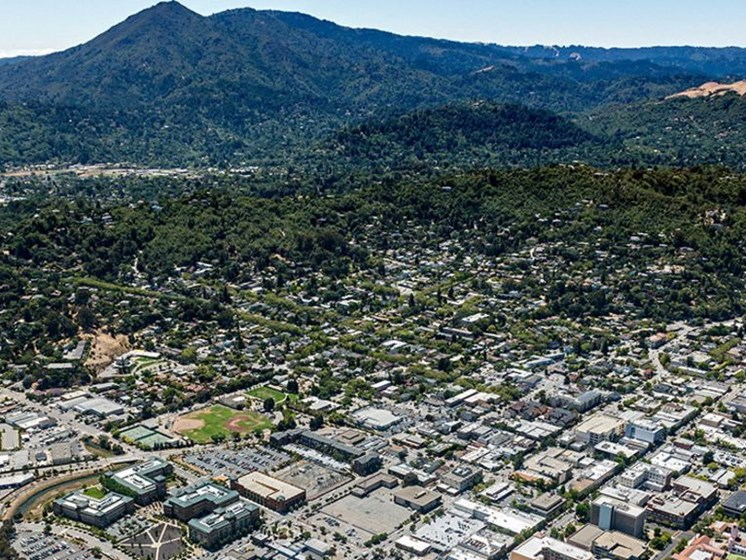 Views of Mt. Tamalpais in specific apartments