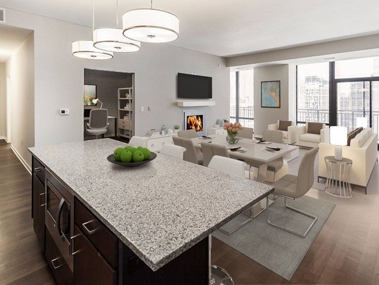 kitchen/dining room/living space