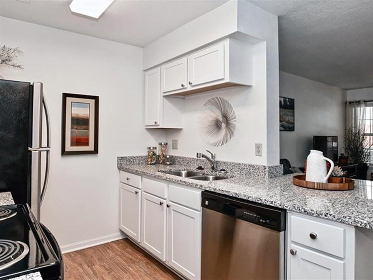 new appliances in kitchen apartments