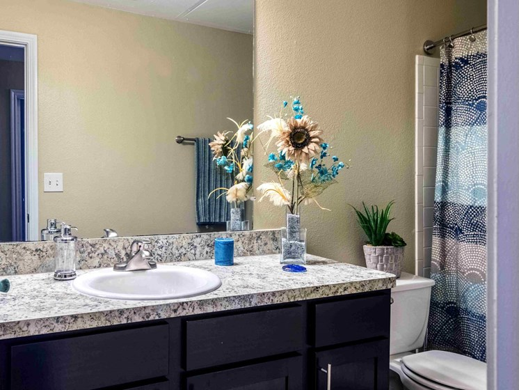 Apartments in Longview, TX bathroom