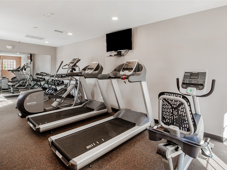 24-Hour Fitness Center at Village Woods Apartments in Milan, IL