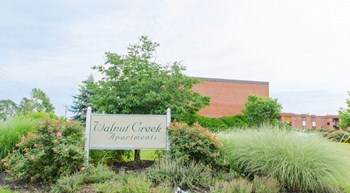 6827 Shenandoah Drive 1-2 Beds Apartment for Rent Photo Gallery 1