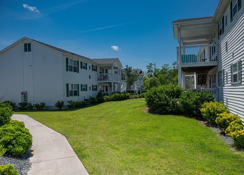 Lush landscaping at Deerbrook Apartment Homes in Wilmington, NC 28405