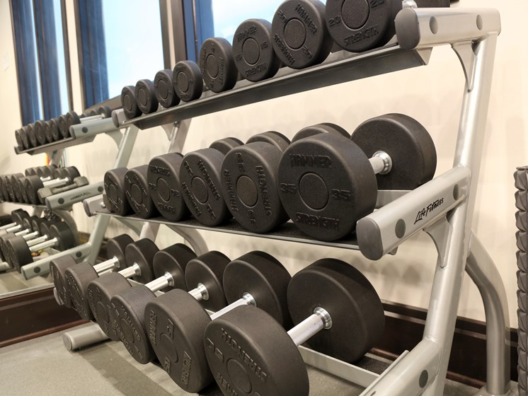Fitness w/ free weights