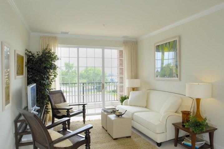Living Room w Views