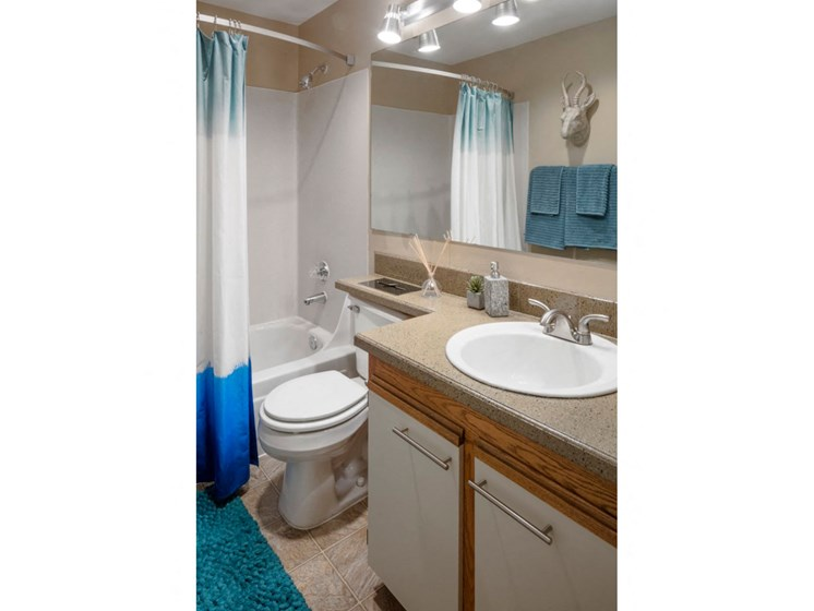 Full bathroom with large vanity area at Landmark at Tanasbourne Apartments in Hillsboro, OR 97124