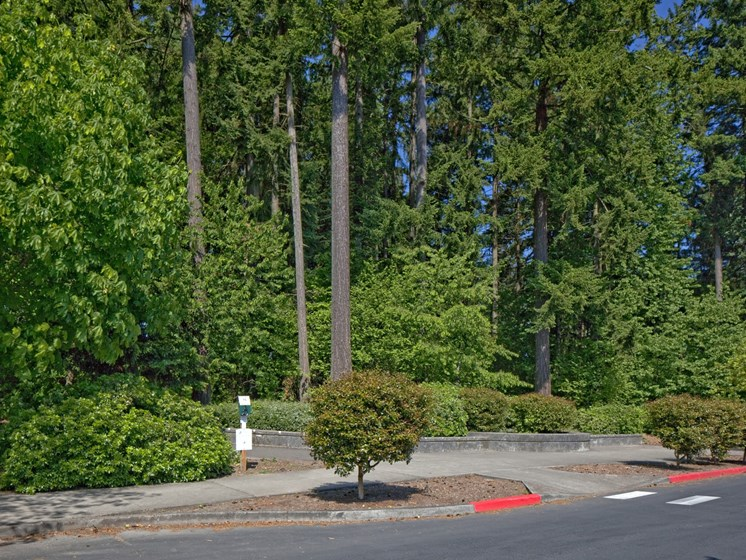 Private driveway leading to Landmark at Tanasbourne Apartments in Hillsboro, OR 97124