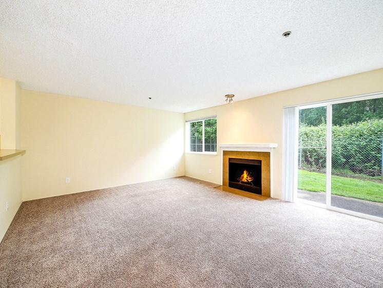 Fireplace living room sliding door