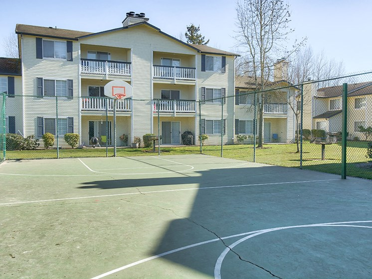 Outdoor basketball tennis