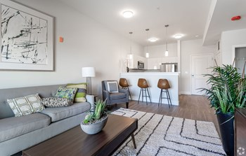 1 Newport Avenue Studio Apartment for Rent Photo Gallery 1