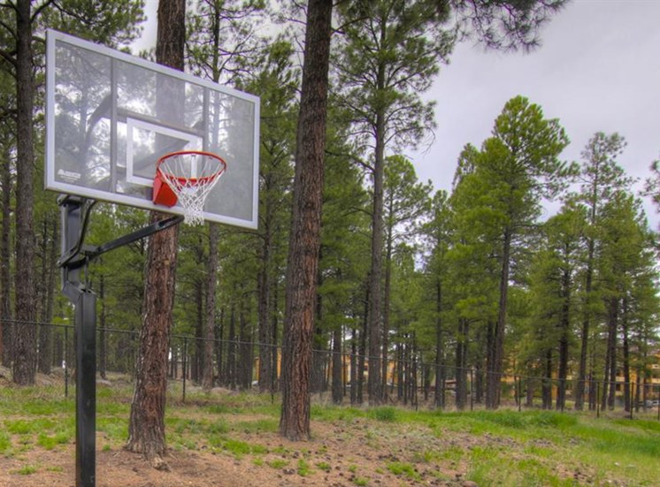 Basketball Court at Woodlands Village Apartments, Flagstaff, AZ,86001