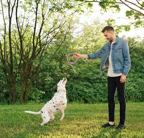 Man enjoying open green space with pet dog