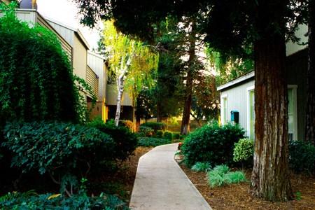 The Redwoods Apartments - Modesto