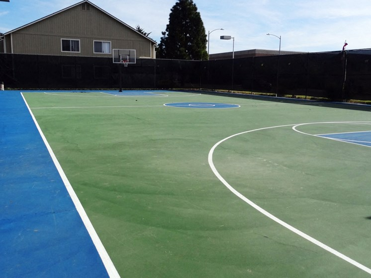 Windscape Village Apartments - Sports Court
