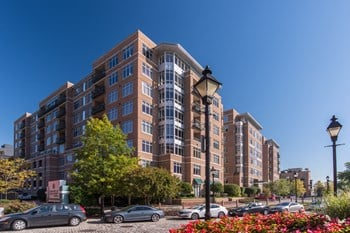 951 Fell Street 2 Beds Apartment for Rent Photo Gallery 1