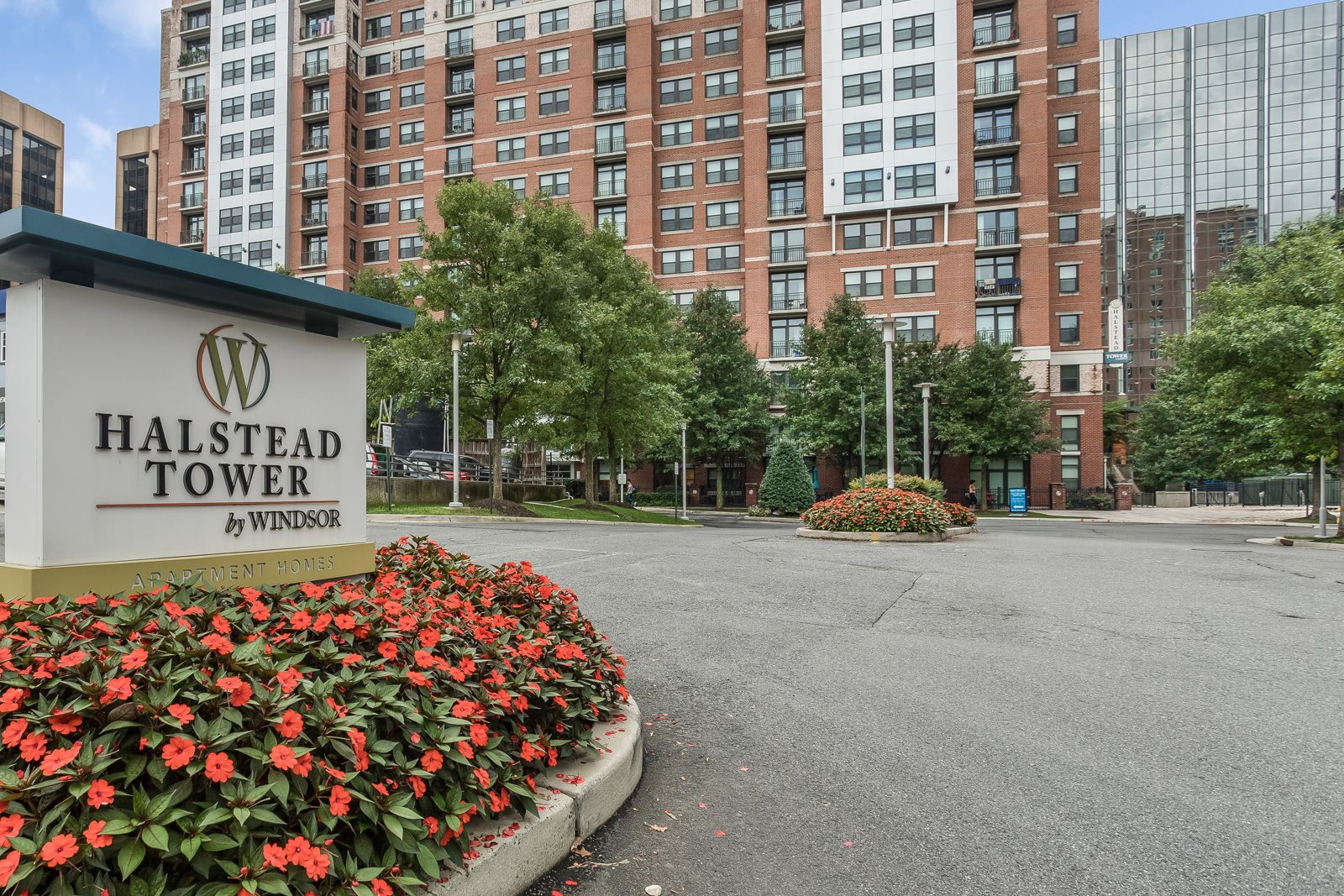 Expansive Indoor and Outdoor Amenity Spaces at Halstead Tower by Windsor, Alexandria, Virginia