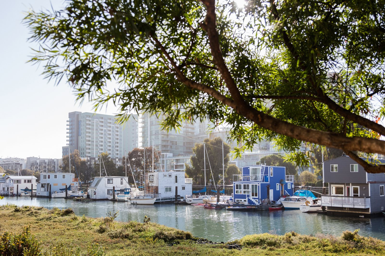 Close to Mission Creek Park at Mission Bay by Windsor, California, 94158
