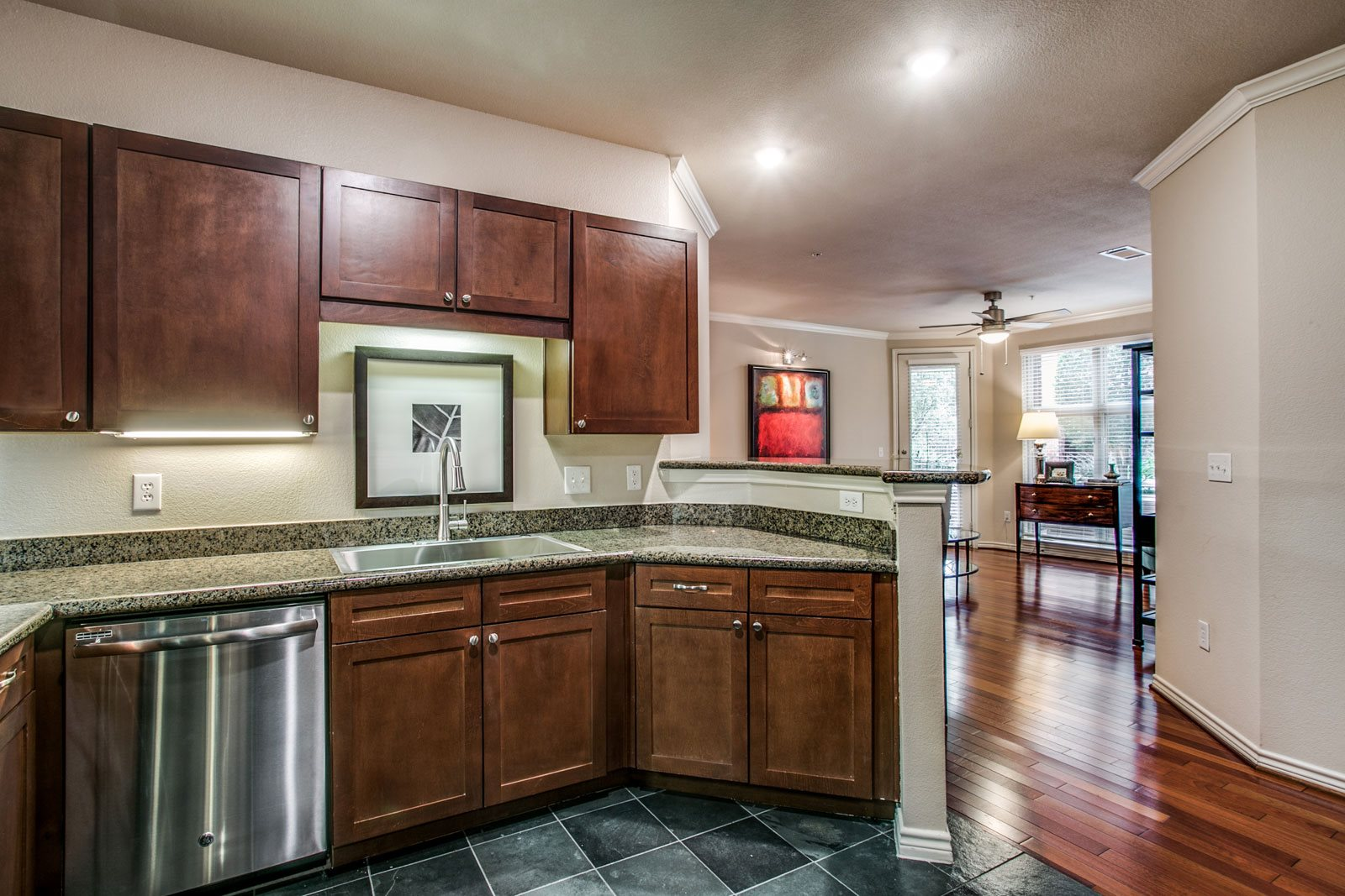 Upscale Stainless Steel Appliances at Trianon by Windsor, 2820 McKinnon Street, TX