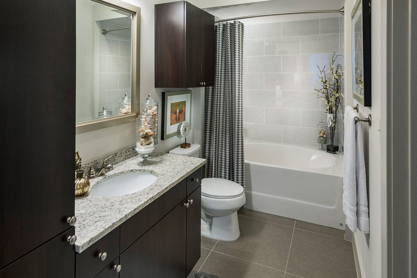 Spa-Inspired Bathrooms at Windsor Lantana Hills, 6601 Rialto Blvd, TX