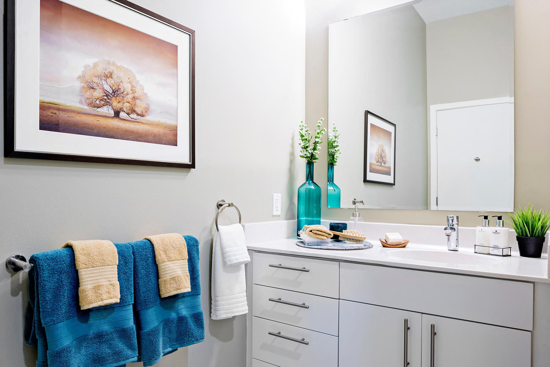 Storage Space in Bathrooms at Waterside Place by Windsor, Boston, Massachusetts