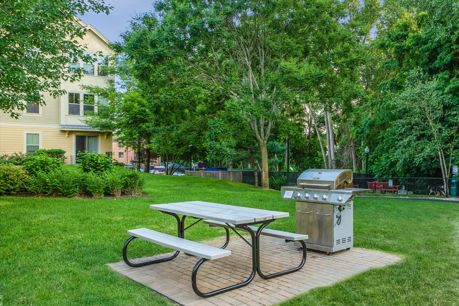 Grilling and Picnic Area at Windsor at Oak Grove, Melrose, MA