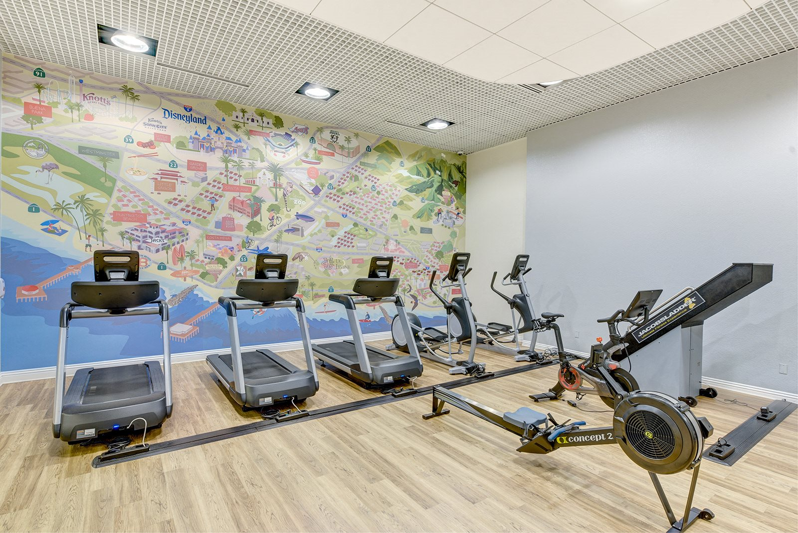 Cardio machines in fitness center