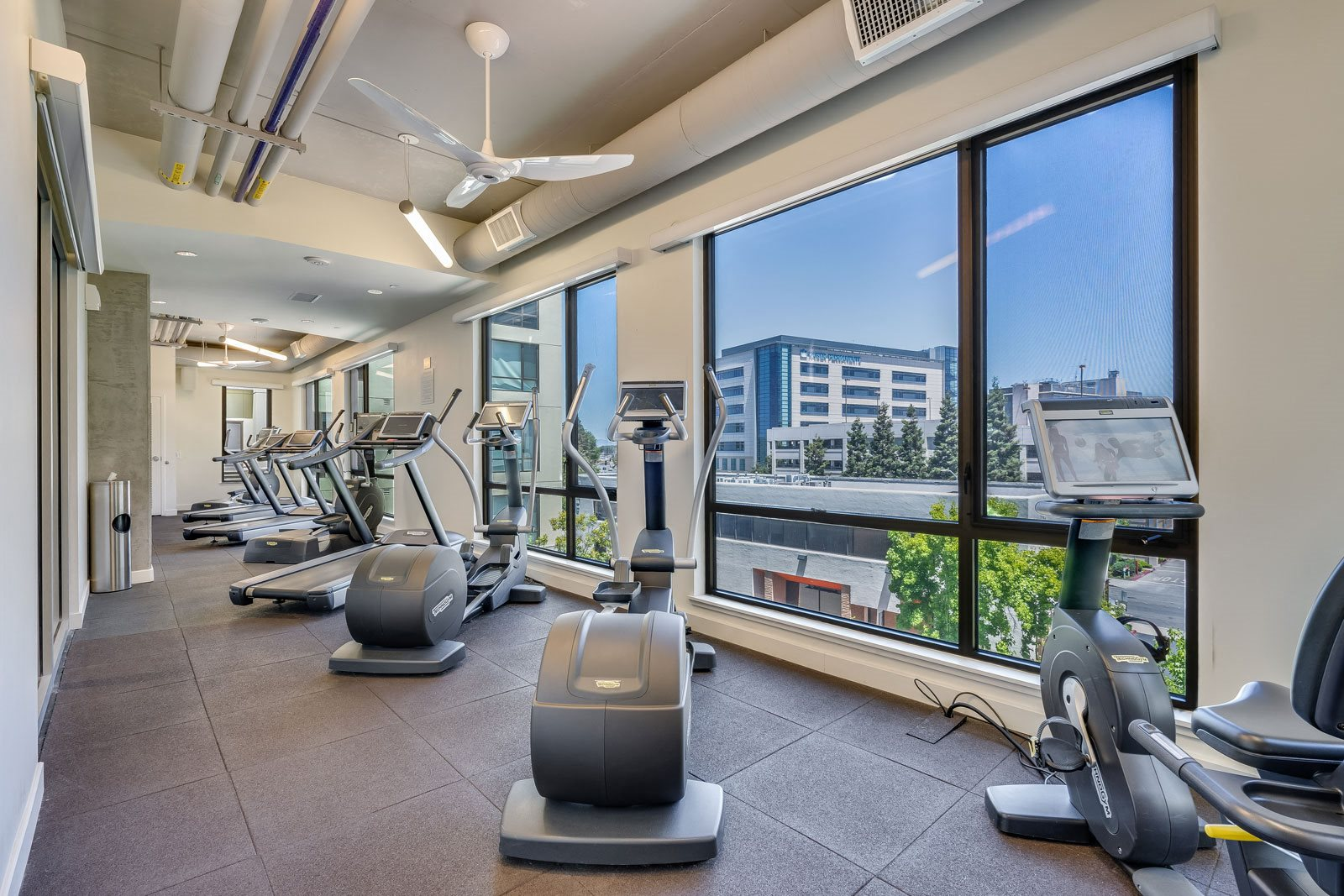 Run with a View at The Marston by Windsor, Redwood City, 94063