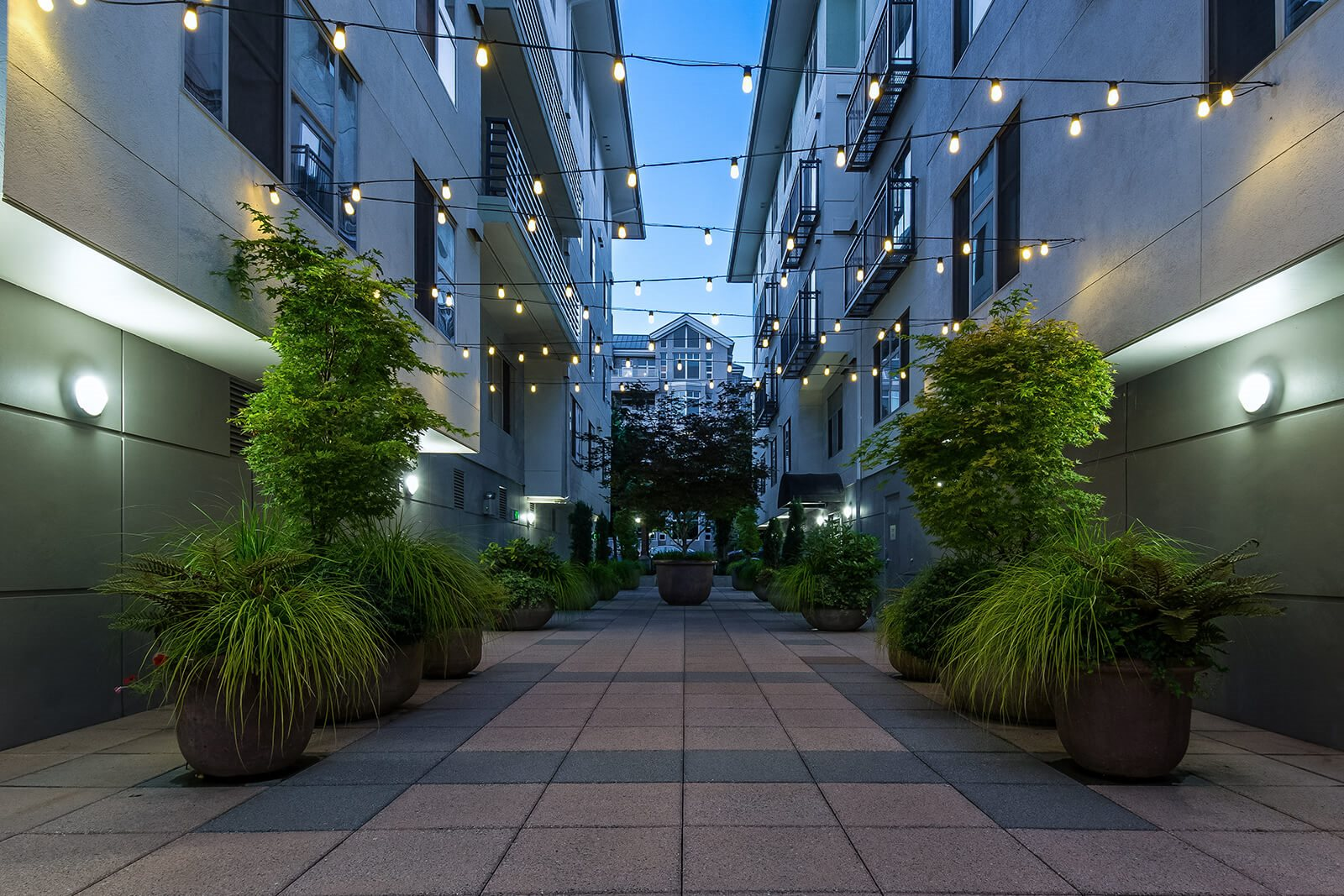 Stunning courtyards at Tera Apartments, Washington, 98033