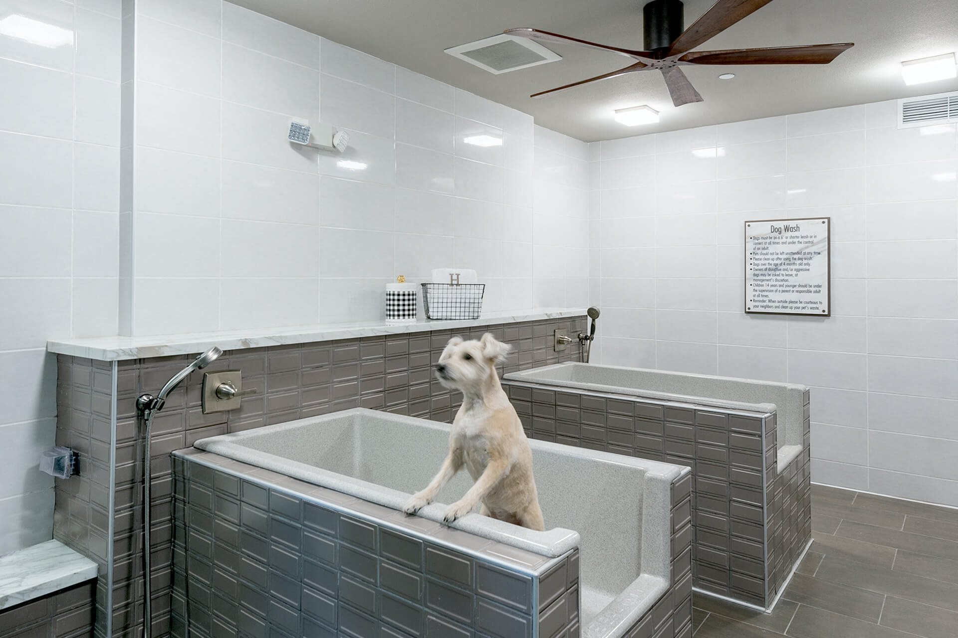 Pet washing station at Cannery Park by Windsor, California, 95112