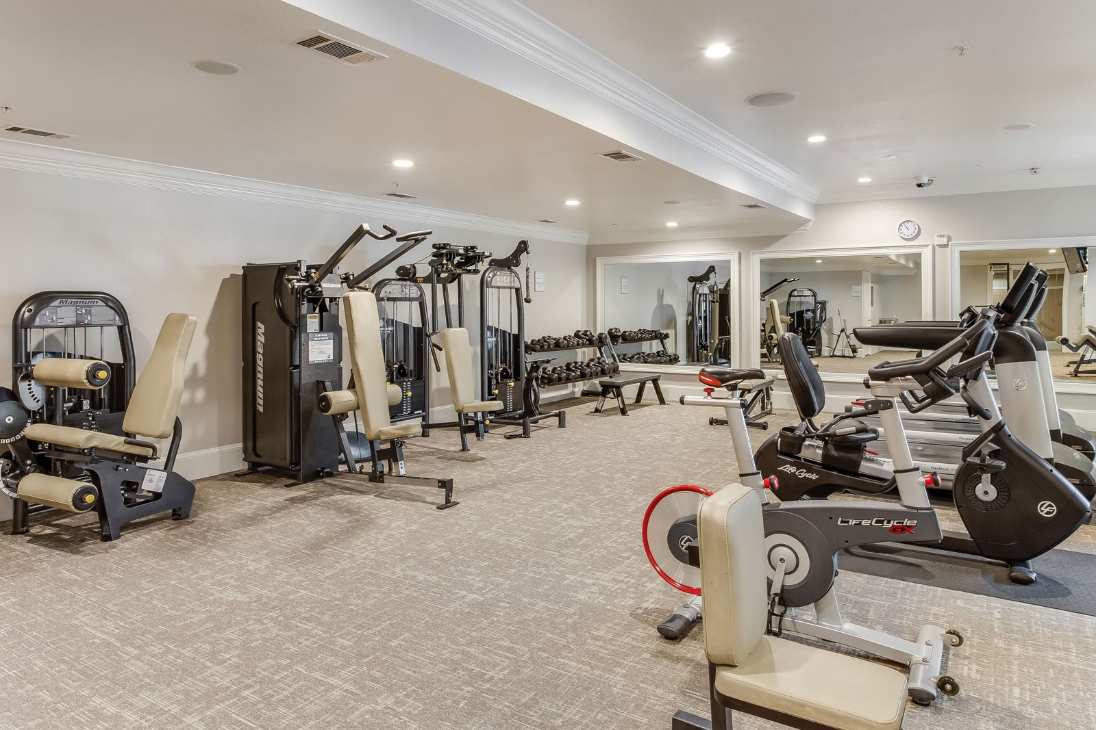 Fully-Equipped Fitness Center at Trianon by Windsor, Dallas, TX