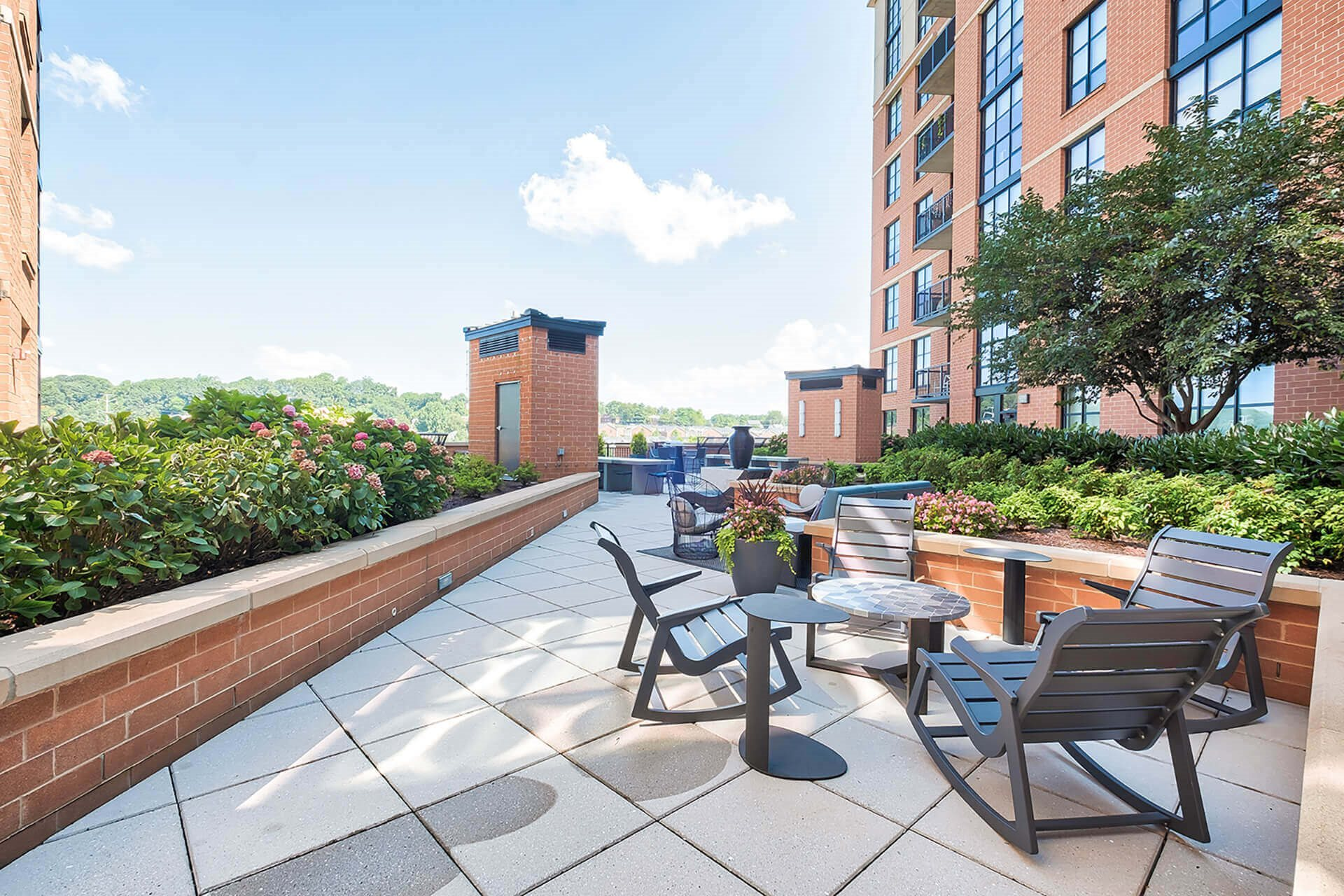 Outdoor, landscaped terrace at IO Piazza by Windsor, Arlington, Virginia