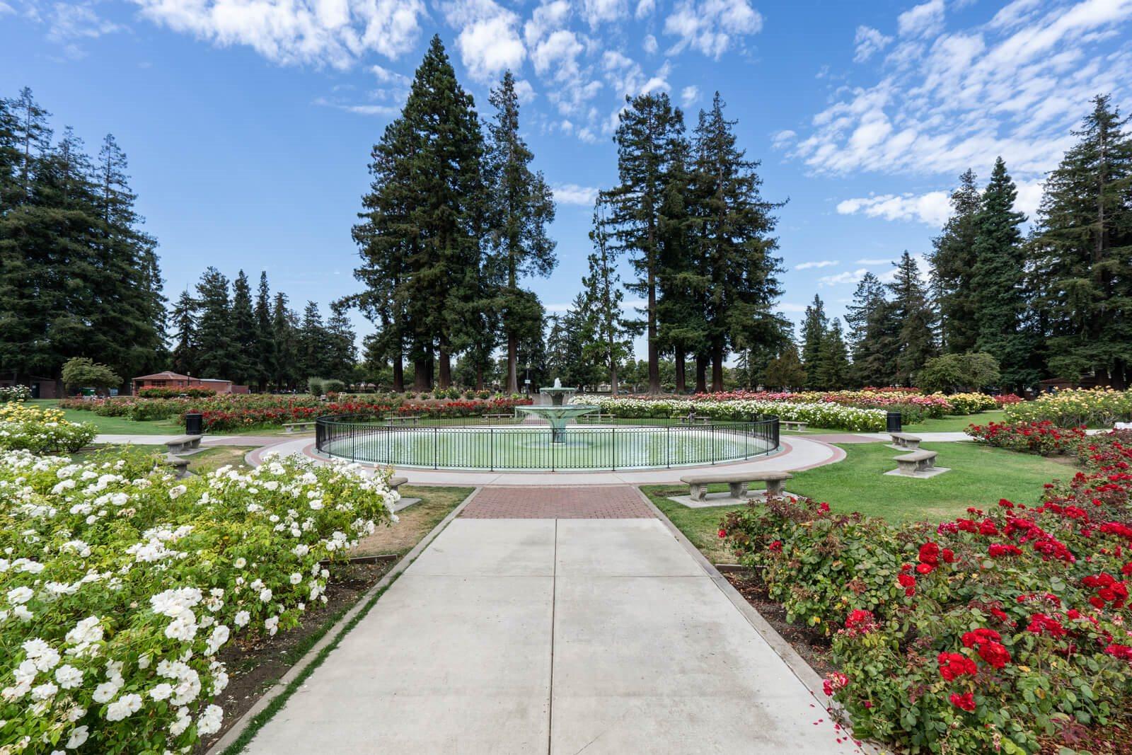 San Jose Municipal Rose Garden near Pavona Apartments, California, 95112