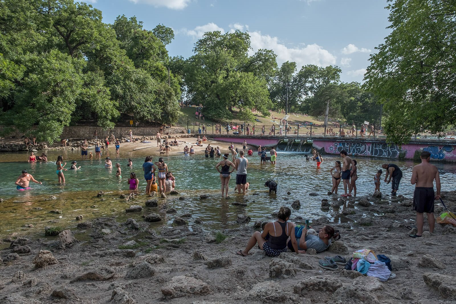 Local Swimming Hole Nearby at Windsor South Lamar, Austin, 78704