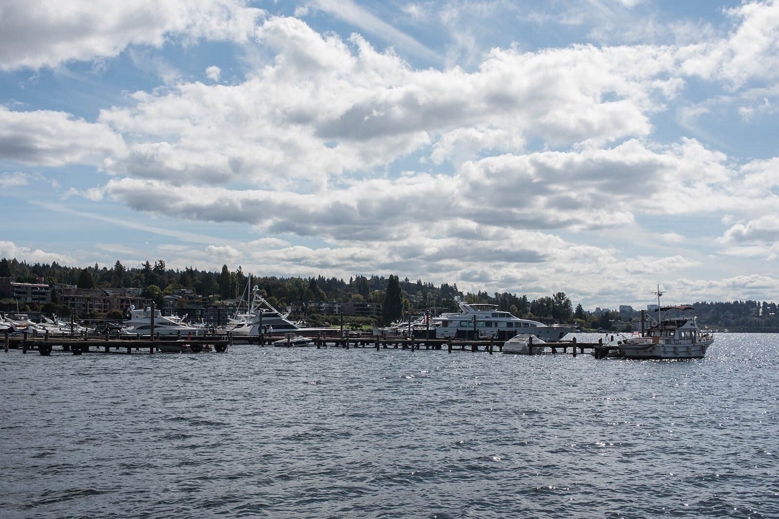 Stunning Lake Views at Tera Apartments, Kirkland, WA