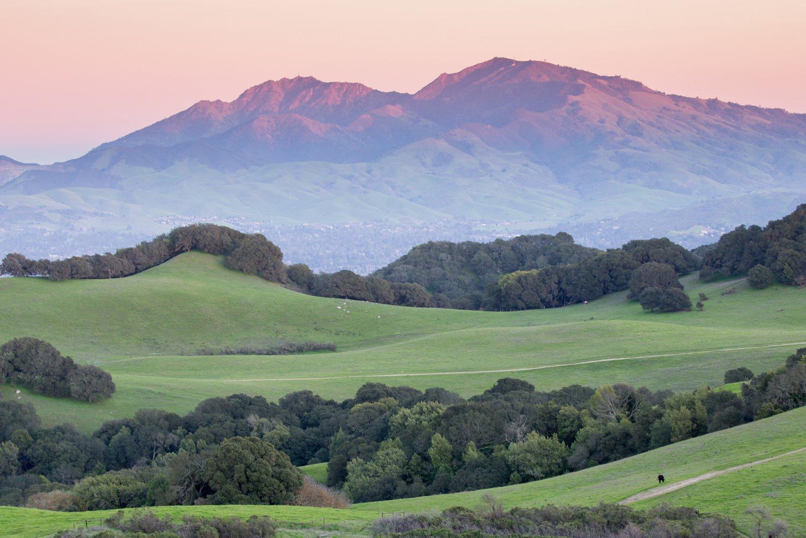 views of Mount Diablo. From Villa Montanaro, California
