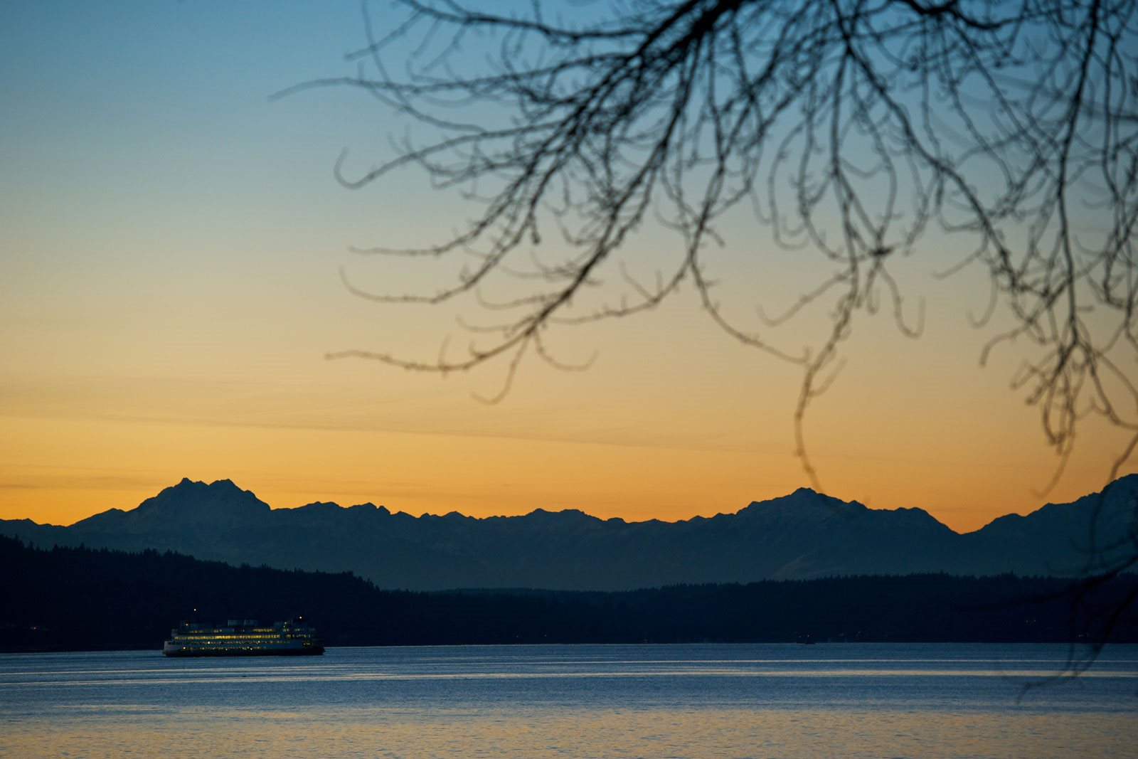 Local Trails and Waterfront Parks near The Whittaker, Washington, 98116