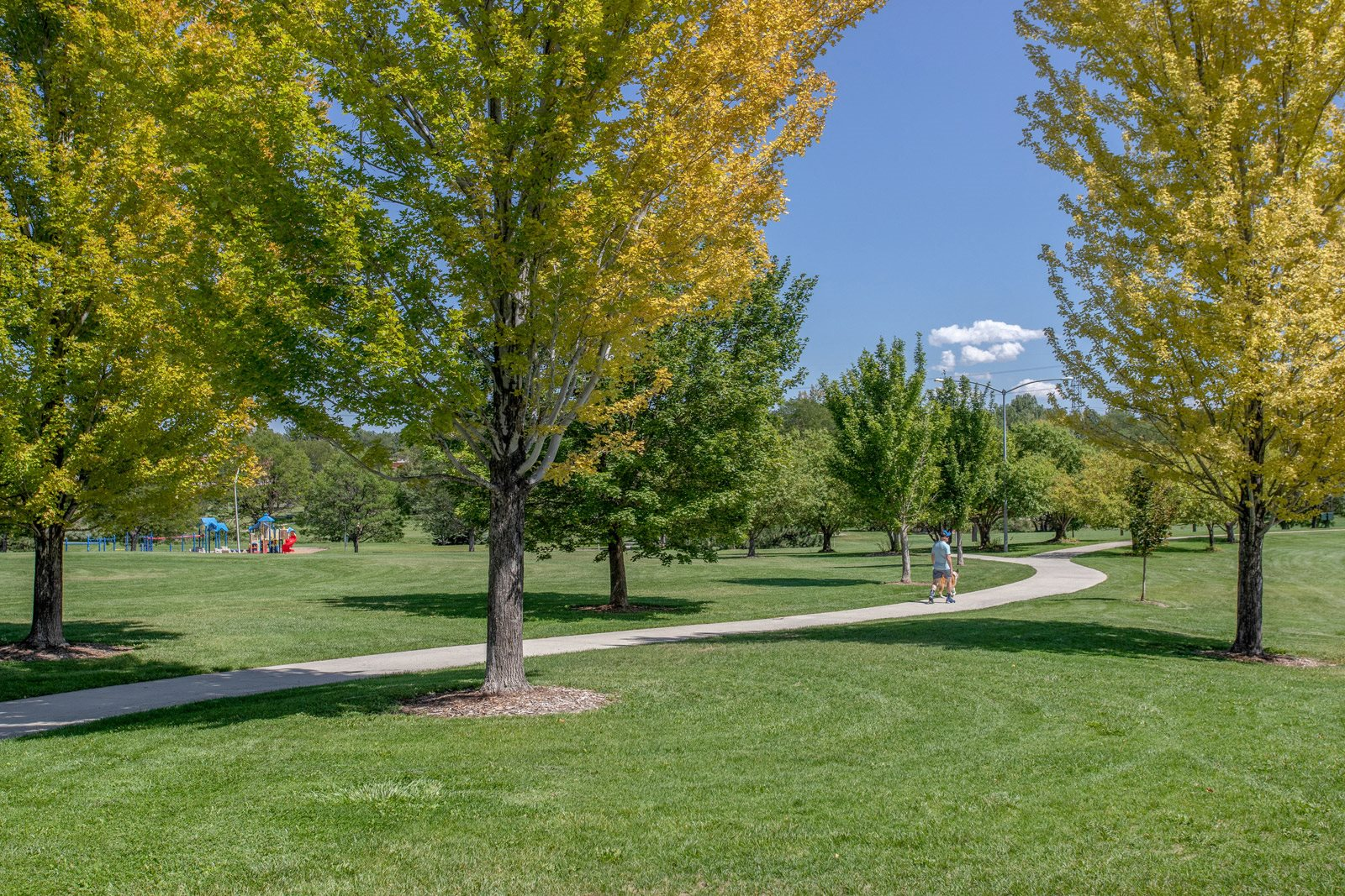 Beautiful nearby parks at The District, Denver, CO,80222