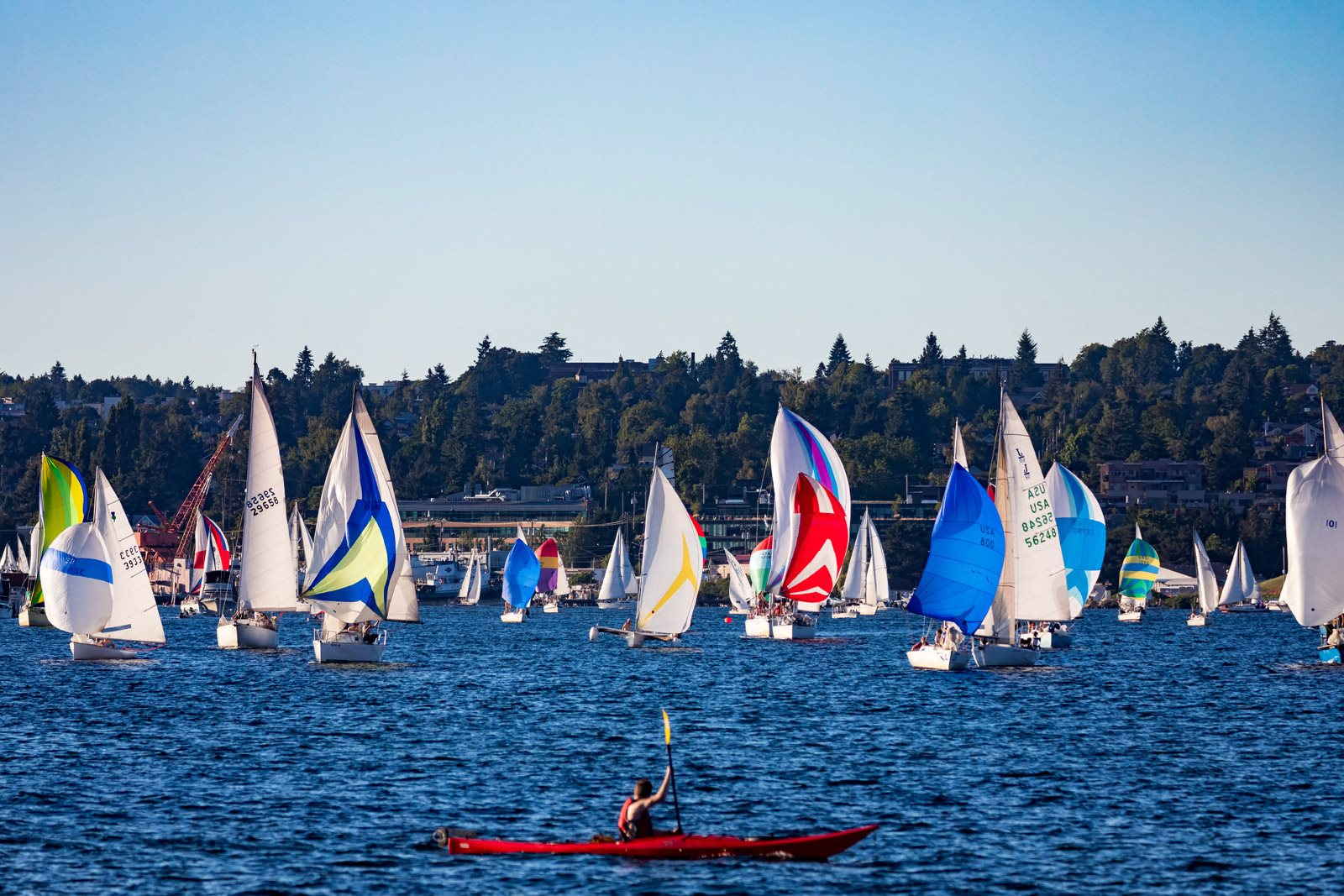 Kayaking and Sailing in South Lake Union near The Martin, Washington, 98121