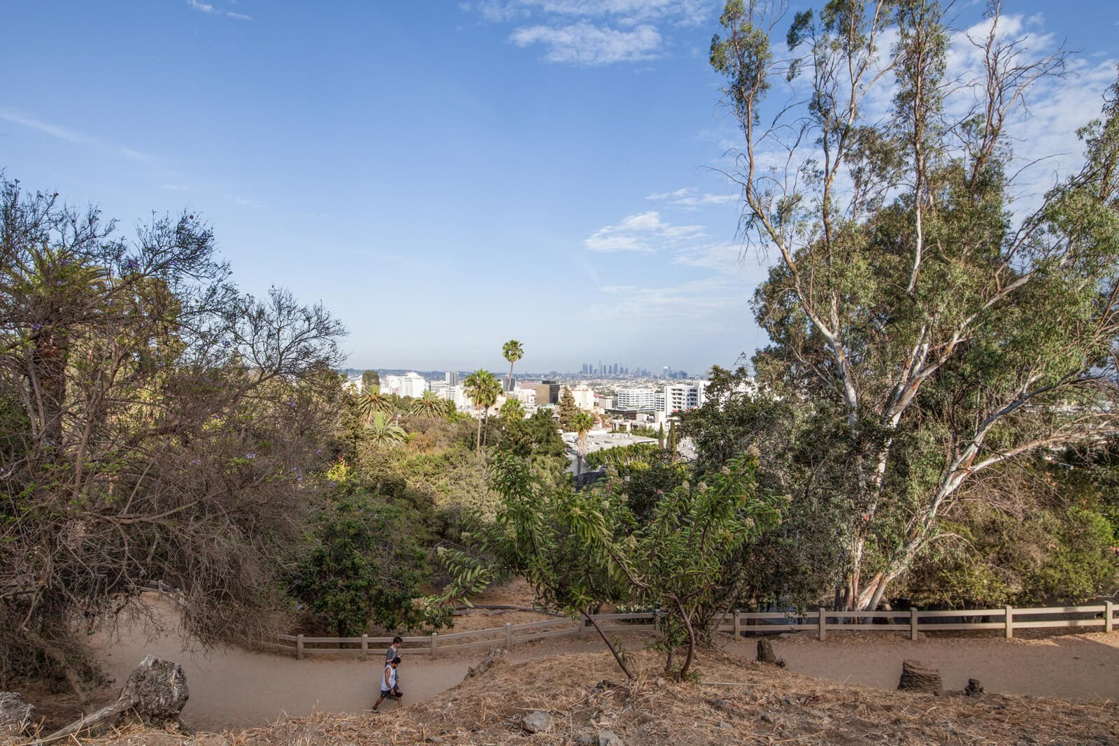 Walk, Run, Hike or Bike to Runyon Canyon at Windsor from Hancock Park, Los Angeles, California