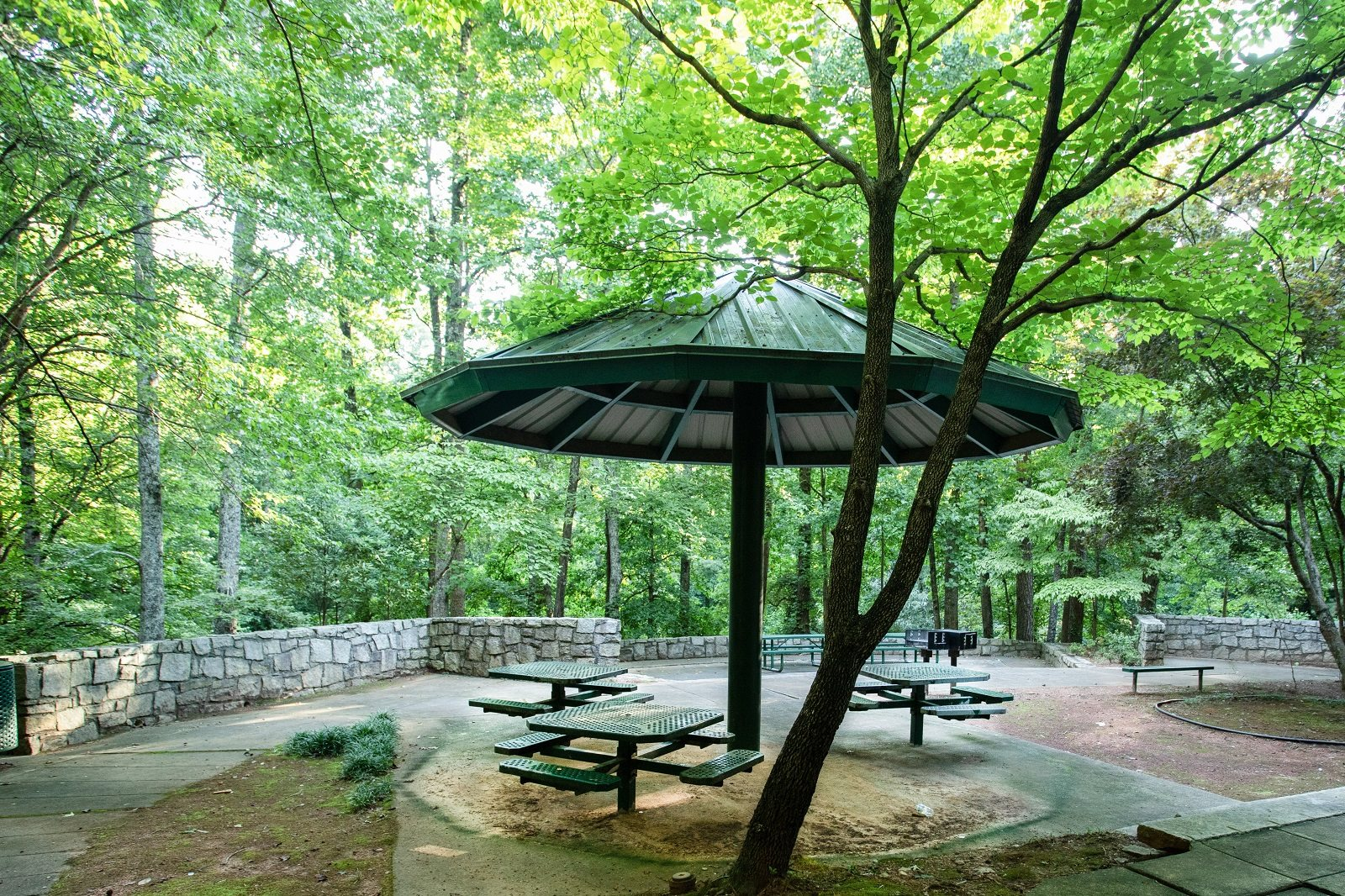 BBQ at Murphy Candler Park near Windsor at Glenridge, 5610 Glenridge Drive, Sandy Springs