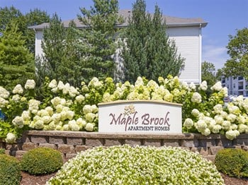 11507 Maple Brook Drive 1 Bed Apartment for Rent Photo Gallery 1