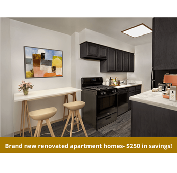 3404 Carlin Springs Road Unit T-3 Studio-1 Bed Apartment for Rent Photo Gallery 1