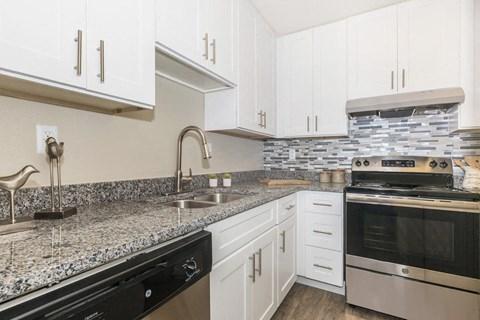 Modern Kitchen full view