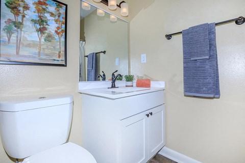 Bathroom Accessories at Forest Ridge on Terrell Mill, Marietta, Georgia